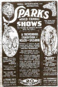Slonice Mary je celebritou, která nemůže chybět na žádném plakátě.