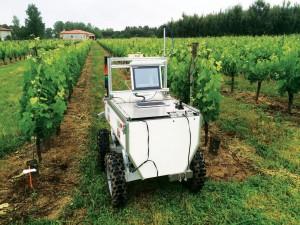 VineRobot by měl do deseti let nahradit lidské sběrače hroznů.