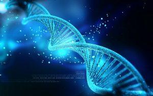 Studie ukázala, že užívání marihuany poškozuje DNA