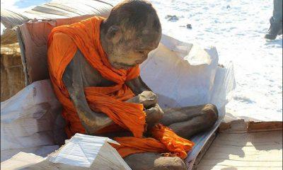 Nalezený muž je prý hlubokém meditativním stavu, který stírá hranice mezi životem a smrtí.