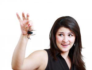 1. Spřátelte se s domácími pavouky. Jsou neškodní a navíc požírají drobné škůdce.