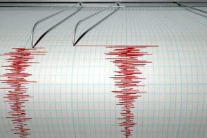 Včasné rozpoznání zemětřesení a varování, byť by samotným ničivým otřesům předcházelo jen o pár sekund, může značně zvýšit naděje na záchranu. Poskytne čas na nalezení vhodného úkrytu či zaujmutí správné polohy.