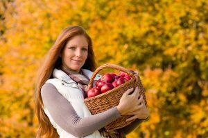 Podzim čas česání jablek