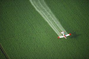 Hrozbou je také nadměrné používání pesticidů.