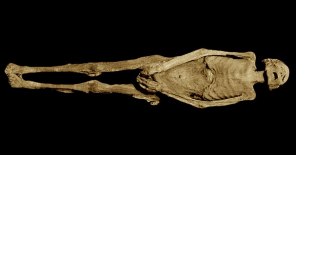 Poprvé od jejího nalezení si veřejnost může mumii beze jména prohlédnout v v káhirském muzeu.