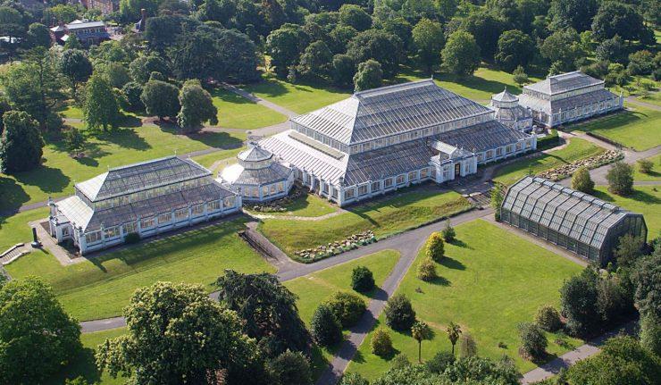 Kvůli svým záchvatům byl Jiří III. převezen na nějaký čas do Kew.