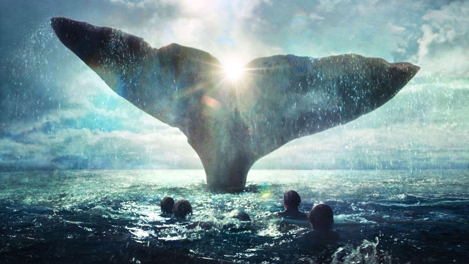 Loď údajně potopila velryba.