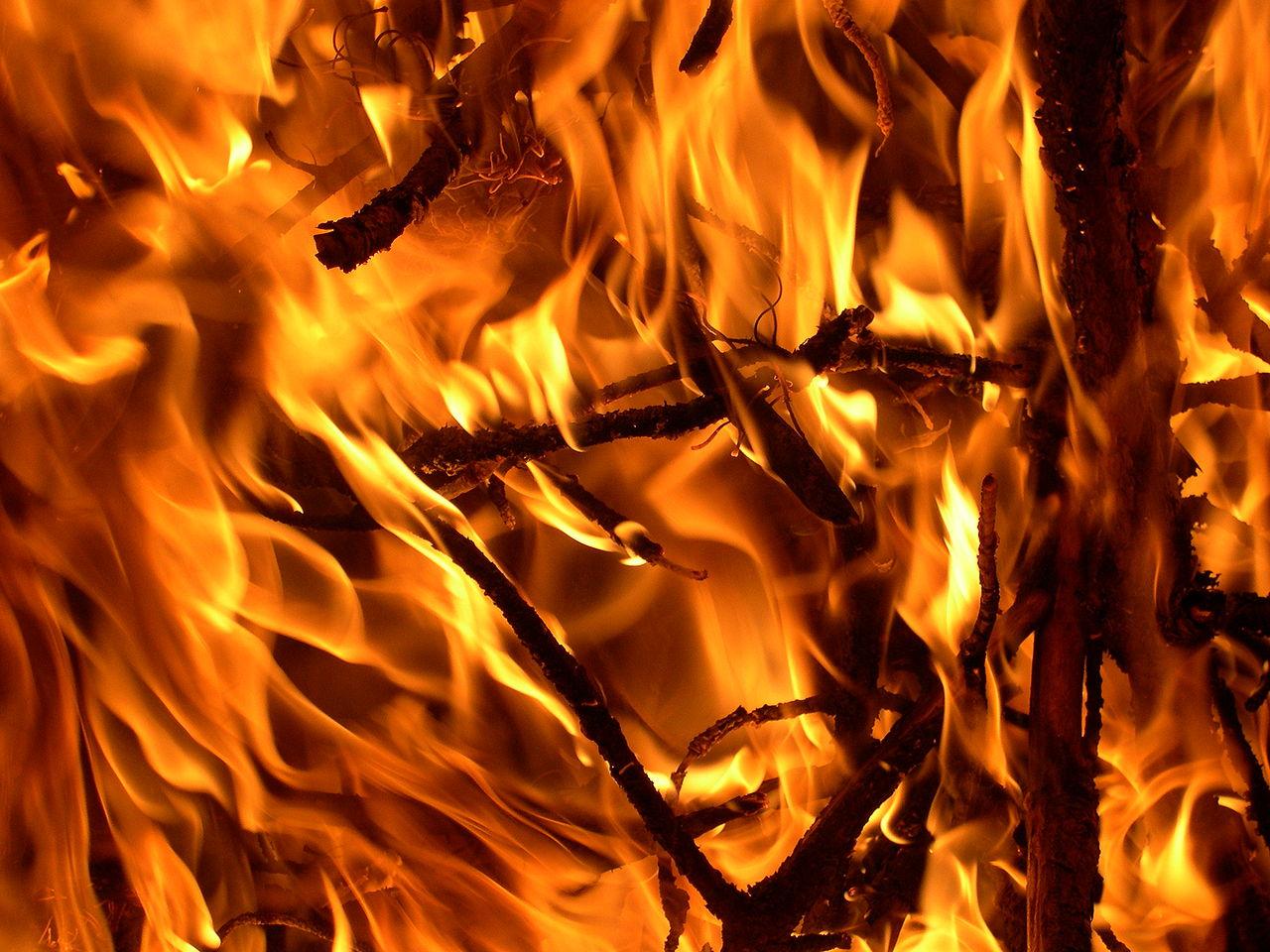 Vzhledem k tomu, že oheň po sobě nezanechá nic kromě uhlíků, jsou téměř všechny informace o využívání ohně v pravěku pouhými teoriemi.