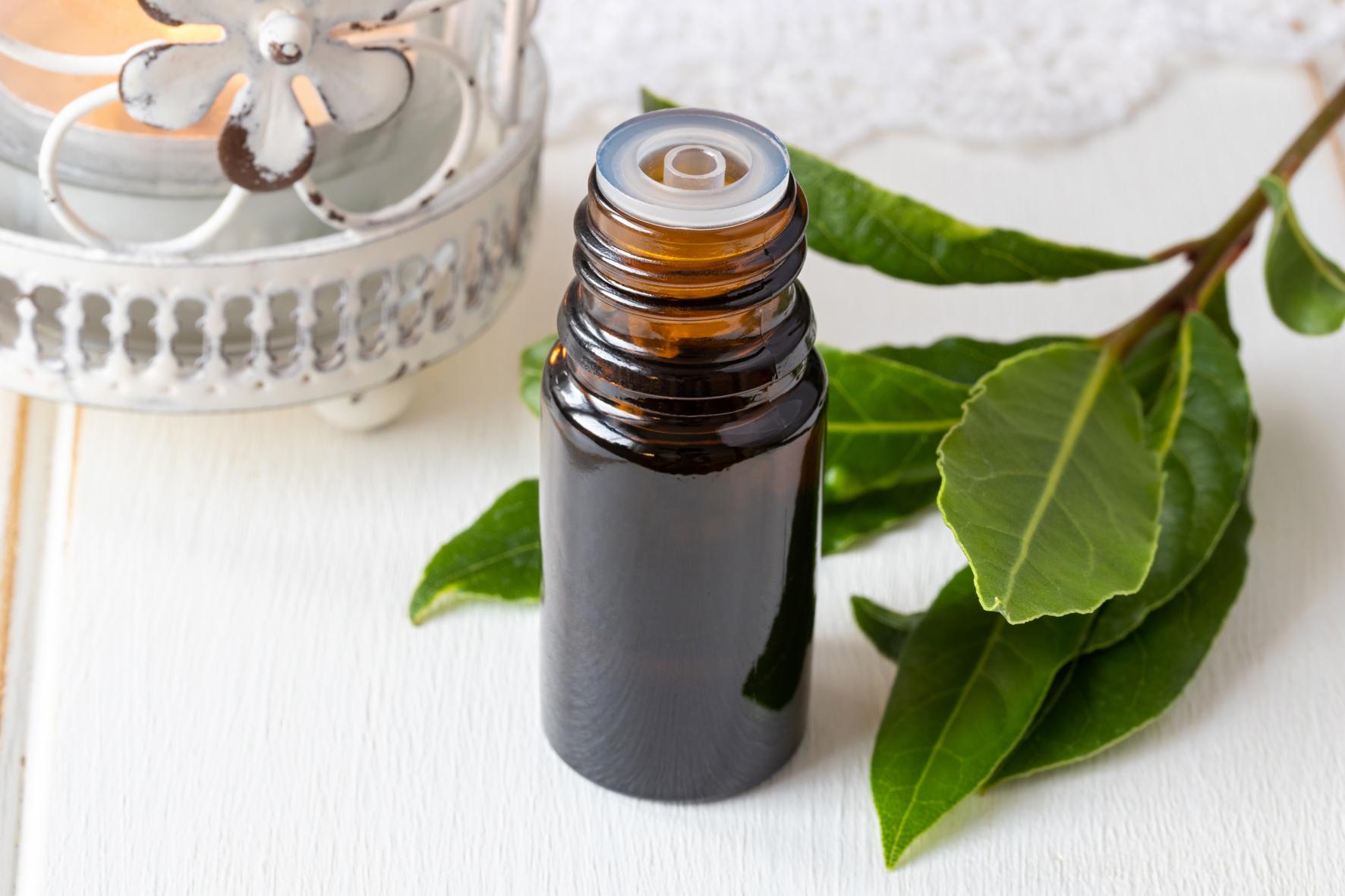 Olej s bobkovým listem je skvělý na potírání bolavých míst a můžete si ho přimíchat do koupele.