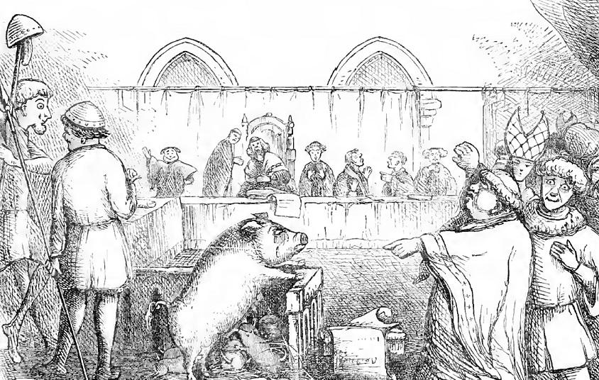Procesy se zvířecími zločinci v minulosti probíhaly stejně jako s lidmi.