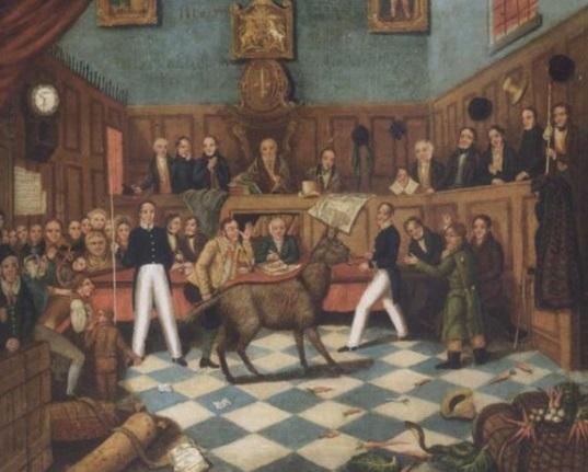 Souzena jsou v průběhu staletí i jiná zvířata. Oslice obviněná v roce 1750 ze sodomie vyvázne bez trestu.
