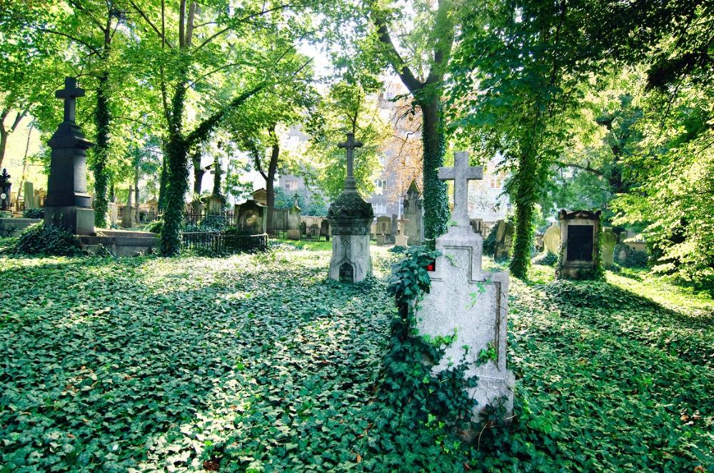 Olšanské hřbitovy obětem moru nestačily