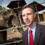 Otázkou, proč je u slonů nižší riziko vzniku rakovinného bujení než u lidí, se zabýval onkolog Joshua Schiffman z University of Utah.