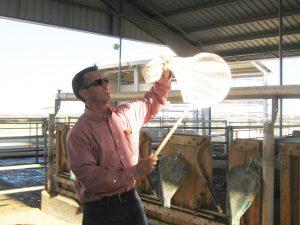 Doktor Jeffery Tomberlin chytající mouchy.