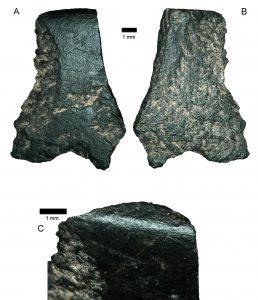 Zkoumaná sekera byla vyrobena z čediče, jenž byl do finálního tvaru zbroušen měkčí horninou, nejspíše pískovcem. Právě touto úpravou získávaly nástroje jak ostré hrany, tak lesklý povrch.