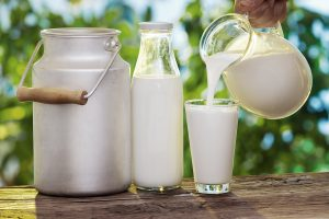 Netolerance k trávení mléčného cukru postihuje hlavně východní národy.