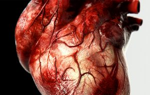 Lidské srdce vytváří dost tlaku na to, aby dokázalo vytrysknout krev až 10 metrů.