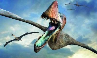 Pokud by drak byl plazem, největším problémem by prý byla křídla. Ta by totiž v takovém případě musela být obrovská.