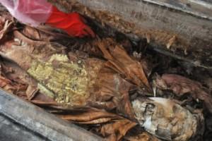 S tělem vojevůdce prý byly pohřbeny mnohé poklady.