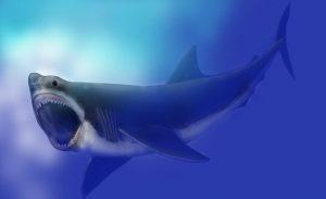 Prohání se skutečně v oceánech potomek prehistorického obřího žraloka megalodona, který mohl mít na délku až 35 metrů?