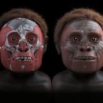 Vědcům se v roce 2012 podařilo rekonstruovat podobu obličeje záhadných předků člověka.