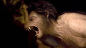 Může se člověk za určitých podmínek změnit v mohutného vlka?