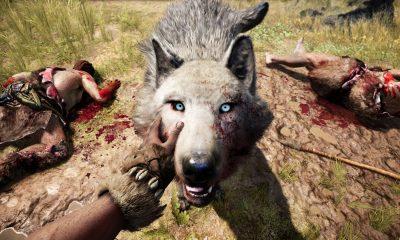 Vědci se domnívají, že Homo sapiens měl oproti neandrtálcům velkou výhodu, dokázal si ochočit vlka.