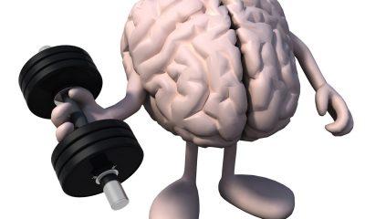 Pokud jste si mysleli, že návštěva posilovny je dobrá jen pro svaly na těle, nenechte se mýlit. Mozku to také prospěje.