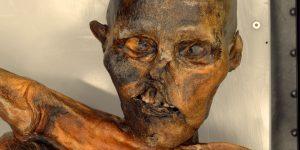 Mumie pravěkého lovce ležela na ledovci v Ötztalských Alpách ve výšce 3210 metrů více než 5 tisíc let.