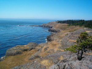 V oblasti aragonitových hornin nalezených na pobřeží Lopez Island v americkém státě Washington byly zjištěny zvláštní izotopy uhlíku.