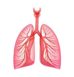 Smysl pro dýchání