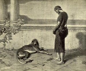 Hippokrates je však nemá rád. Řeky varuje před vzteklinou.