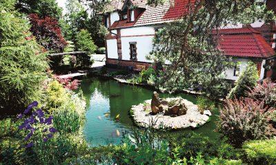 Jezírku v okrasné zahradě od firmy Banat dominuje ostrůvek s osvětlenými kameny.