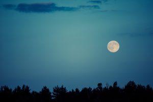 Měsíc zásadně ovlivnil vývoj naší planety.