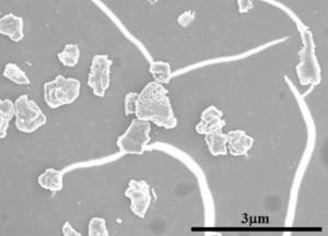 Jednotlivé nanokrystaly Q-uhlíku, jak jsou vidět pod elektronovým mikroskopem