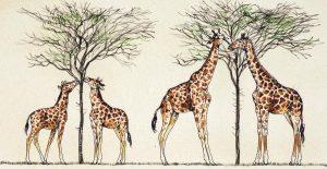 Ilustrace zachycuje lamarckistickou představu evoluce na příkladu žirafího krku.