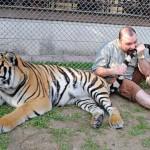 Tygr je pravděpodobně ochočený – kousat do ocasu divoké zvíře by zcela jistě bylo velmi hloupé.