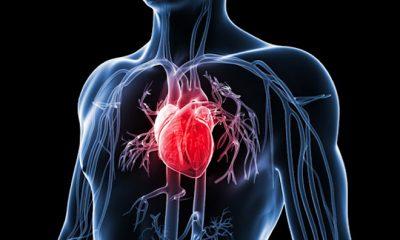 Ne všechny srdeční choroby ale musí být smrtelné. Srdeční arytmii – poruchu srdečního rytmu, je většinou možné spravit léky.