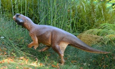 """Hotový 3D model dinosaura je fotografován ve svém """"přirozeném prostředí""""."""