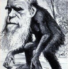 Darwin byl za začátku pro své myšlenky zesměšňován a zobrazován s tělem opice.