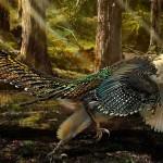 Ačkoliv pokryv těla tohoto dinosaura tvořilo peří, odborníci jsou přesvědčeni, že tvor nebyl schopen letu.