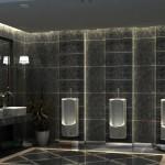 Z toalet se mohou stát multifunkční místnosti