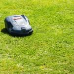Trávník jako kobereček
