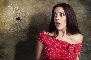 Zkuste babské rady Jedna z nich praví, že pavoukům vadí žaludy a kaštany.
