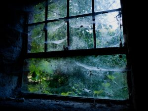 Udržujte v pořádku těsnění kolem oken a dveří