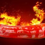 Horké novinky ze světa chilli papriček