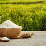 Co jste (možná) o rýži netušili!
